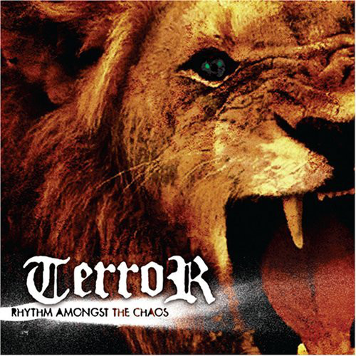 Terror – Rhythm Amongst The Chaos MCD
