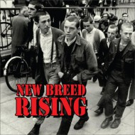 "V/A - New Breed Rising 12"" LP (Blood Red)"